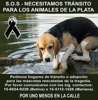 http://www.facebook.com/porunomenos.enlacalle